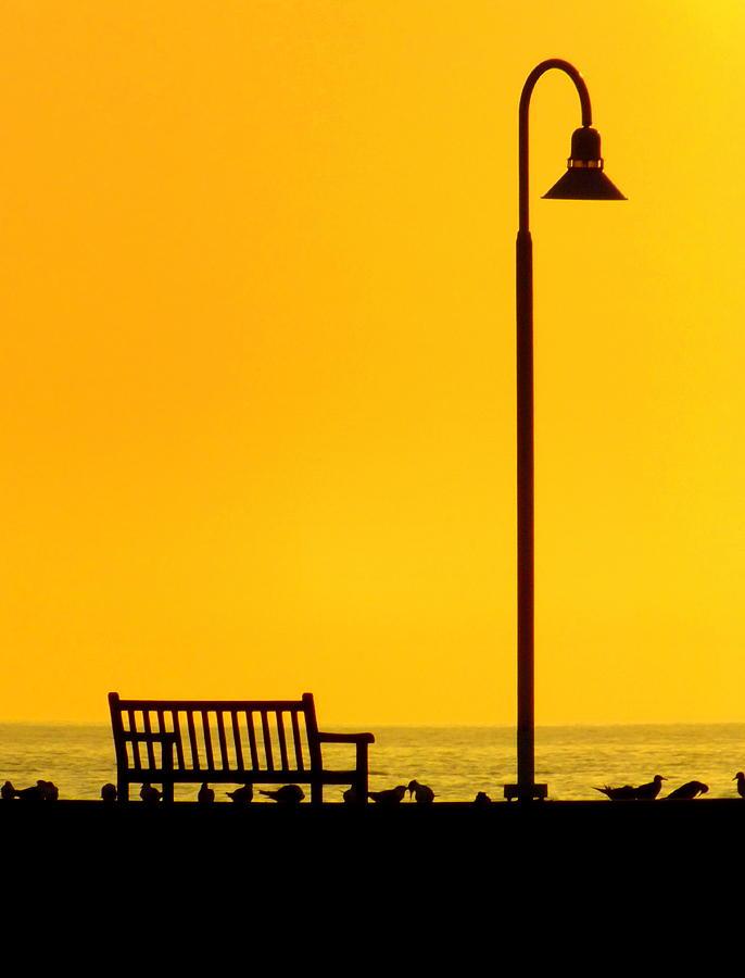 The Long Wait Photograph