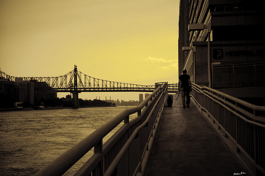 Queensboro Photograph - The Long Walk by Madeline Ellis