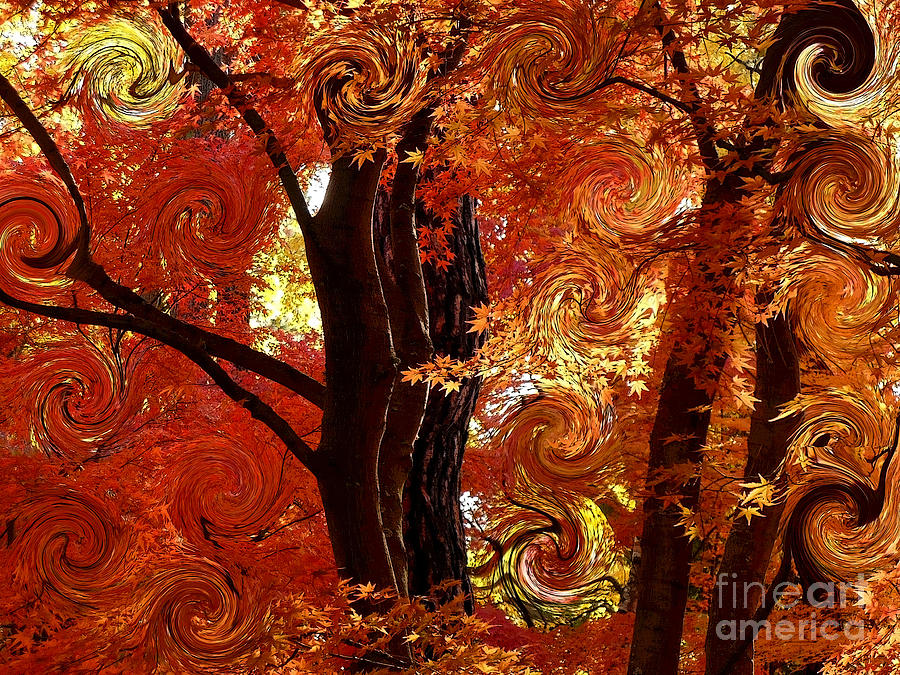 The Magic Of Autumn - Digital Abstract Photograph