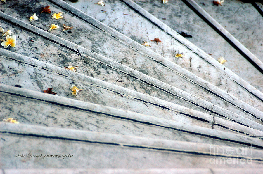 The Marble Steps Of Life Photograph