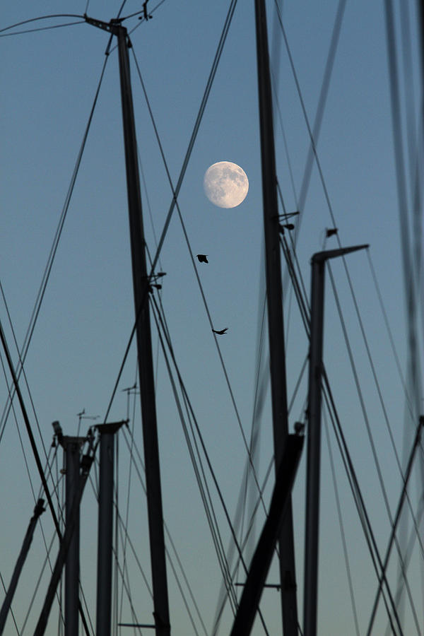 - the-masts-of-sailboats-dawn-moon-in-background-gerhard-fitzthum