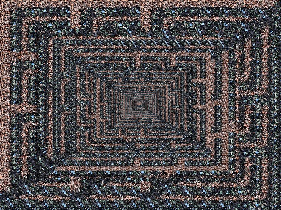 The Maze Digital Art
