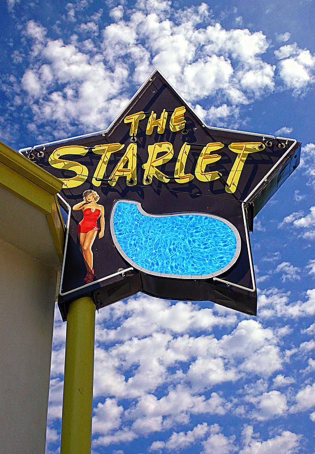 The New Starlet Photograph  - The New Starlet Fine Art Print