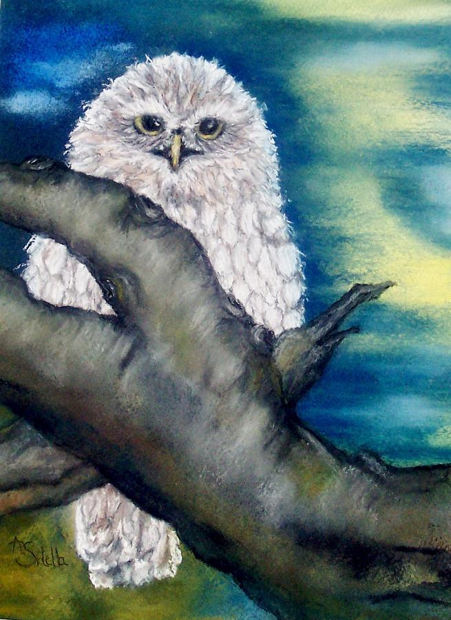 The Night Owl Painting  - The Night Owl Fine Art Print
