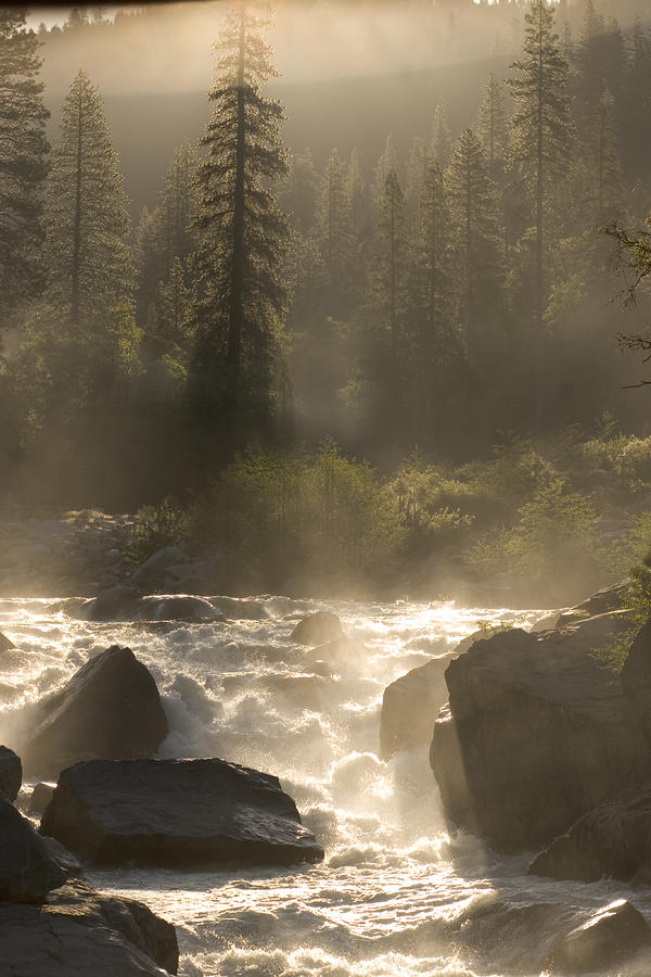 The North Fork Of The Stanislaus River Photograph