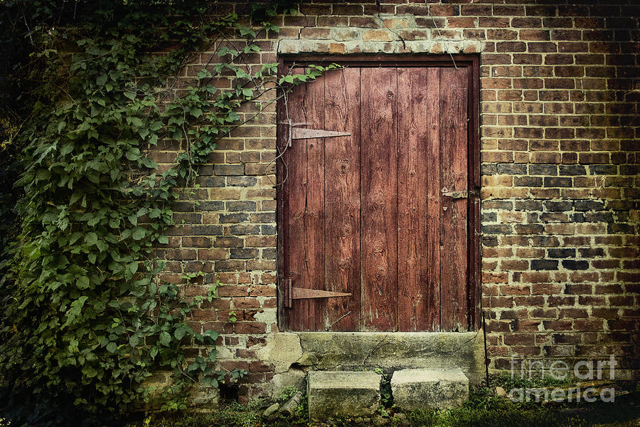 The Old Red Door Photograph