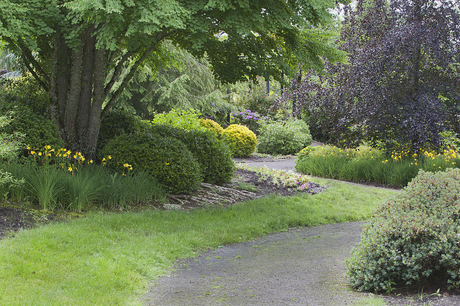 The Oregon Gardens Is A Botanic Garden Photograph By