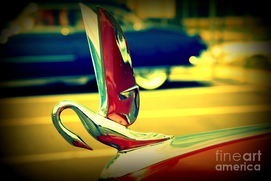 The Packard Swan Photograph  - The Packard Swan Fine Art Print