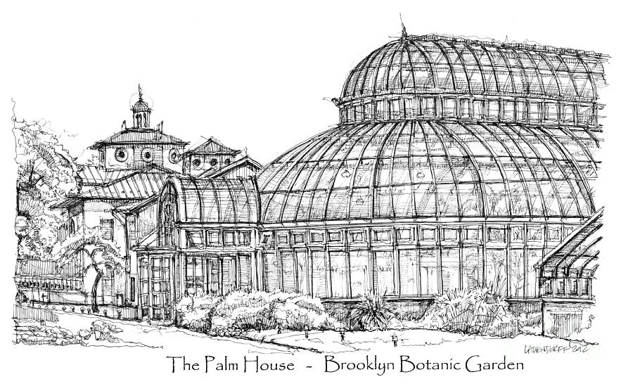 The Palm House In Brooklyn Botanic Garden Drawing  - The Palm House In Brooklyn Botanic Garden Fine Art Print