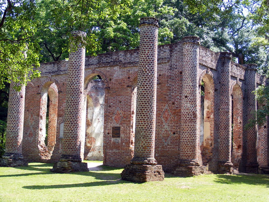 The Palmetto Phoenix Old Sheldon Church Ruins Photograph  - The Palmetto Phoenix Old Sheldon Church Ruins Fine Art Print