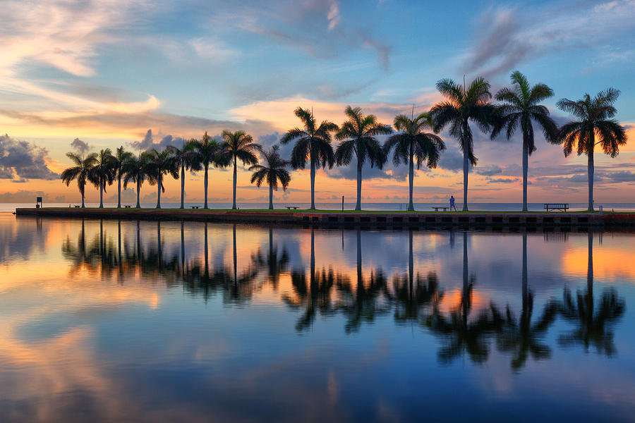 Florida Photograph - The Photographer by Claudia Domenig