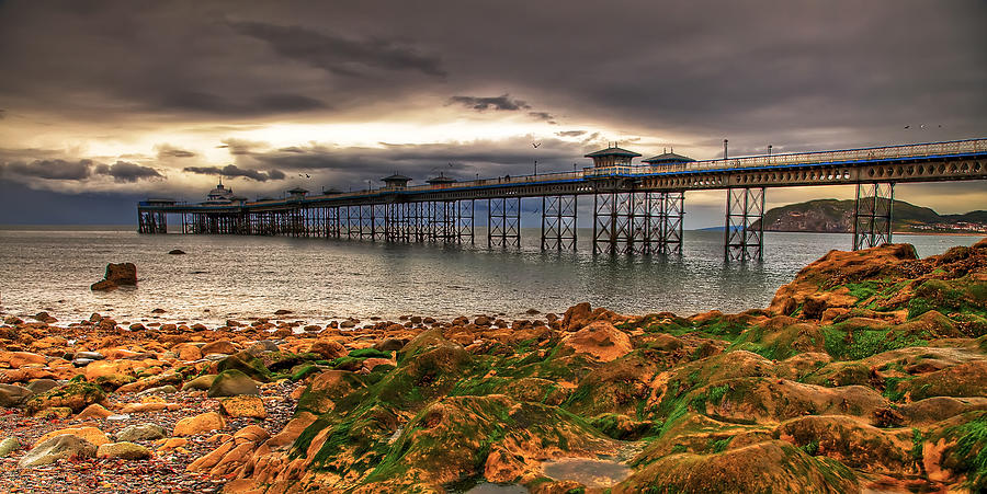 Beach Photograph - The Pier by Adrian Evans