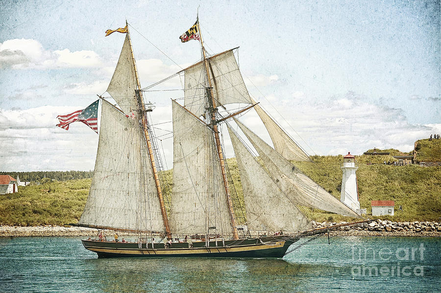The Pride Of Baltimore In Halifax Photograph  - The Pride Of Baltimore In Halifax Fine Art Print