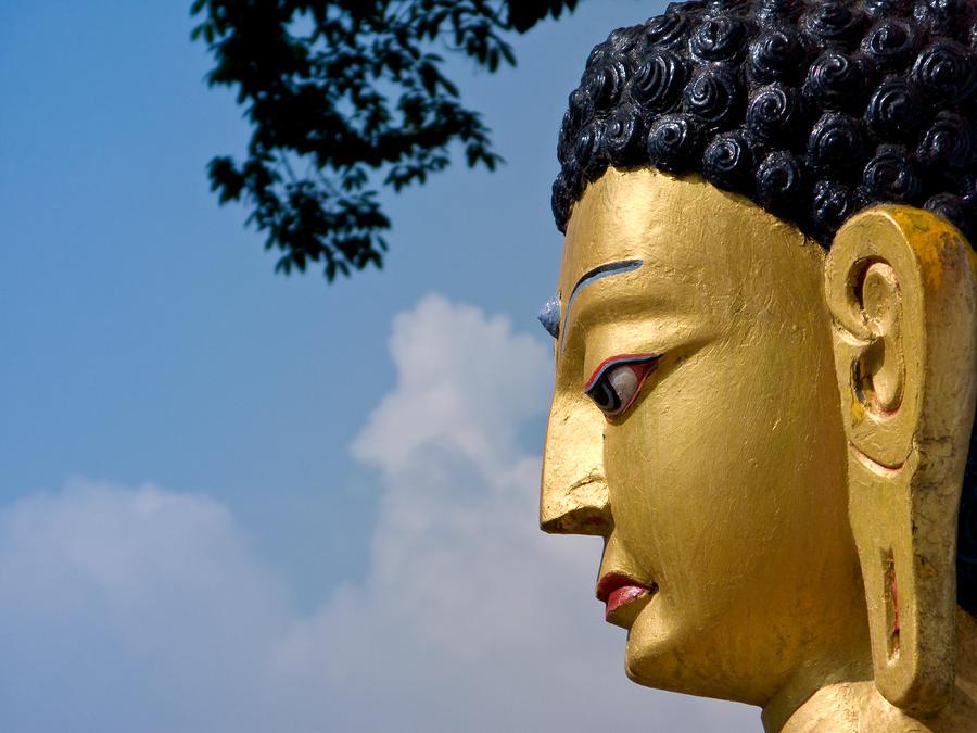 The Profile Of Buddha Photograph