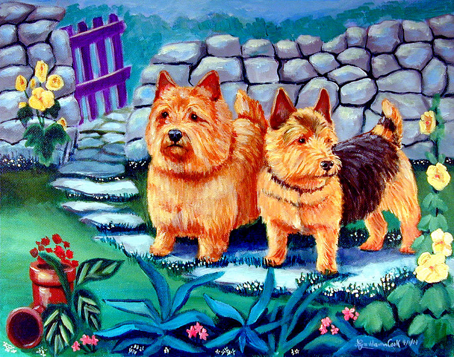 The Purple Gate - Norwich Terrier Painting  - The Purple Gate - Norwich Terrier Fine Art Print