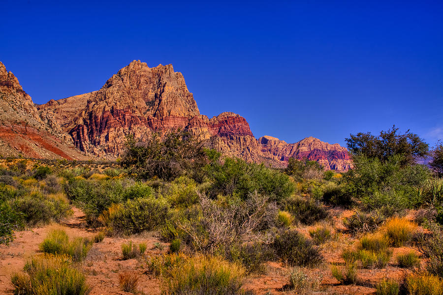 The Red Rock Canyon At Bonnie Springs Ranch Photograph  - The Red Rock Canyon At Bonnie Springs Ranch Fine Art Print