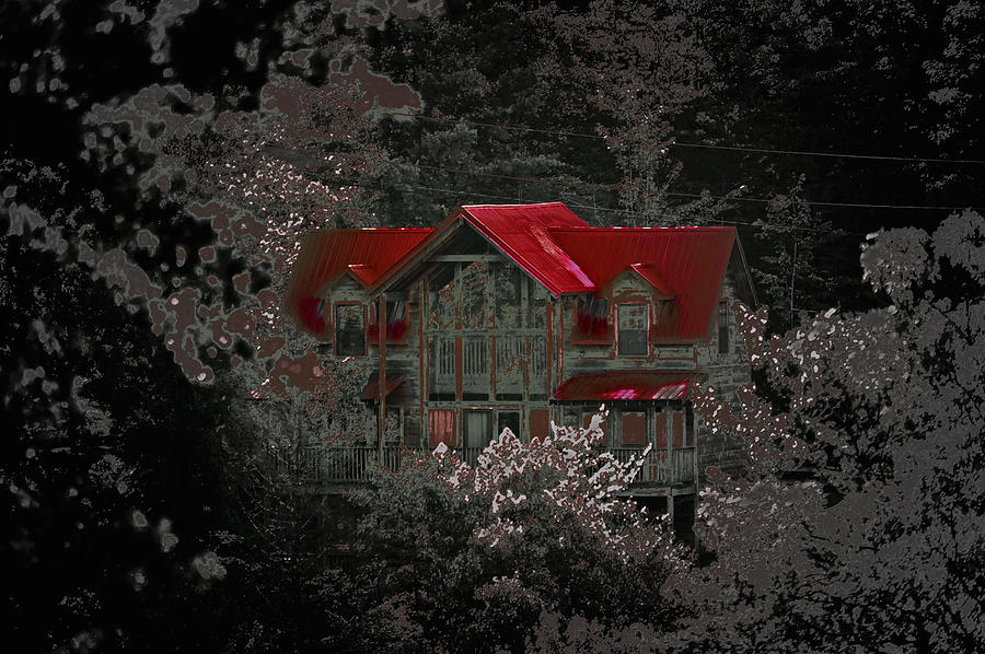 The Red Roof Photograph  - The Red Roof Fine Art Print