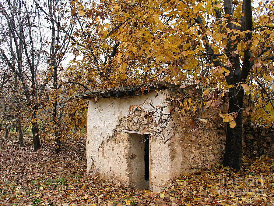 The Remote Autumn Hut Photograph