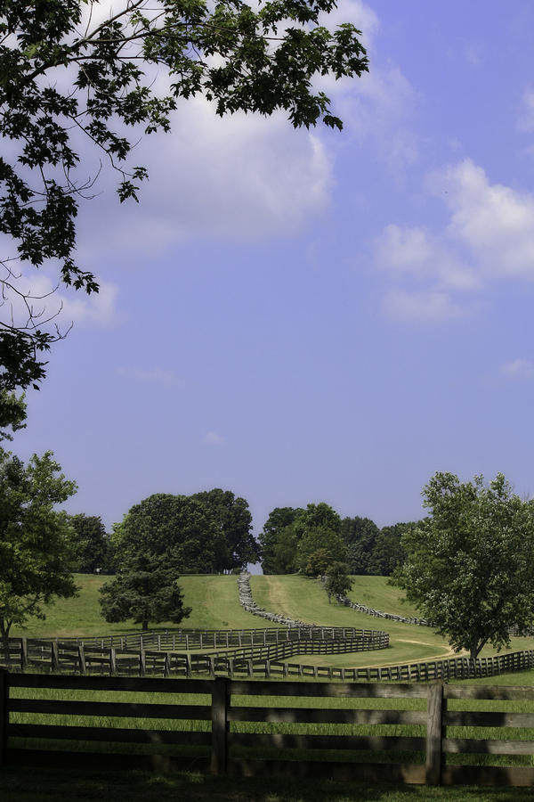 The Road To Lynchburg From Appomattox Virginia Photograph  - The Road To Lynchburg From Appomattox Virginia Fine Art Print
