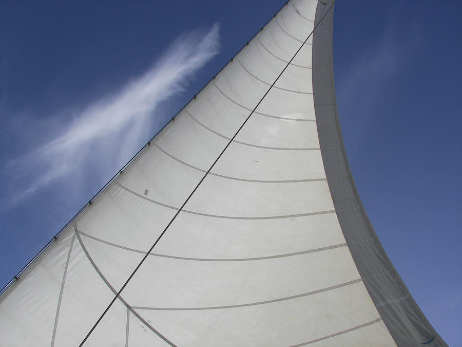 The Sail  Photograph