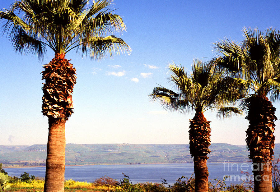 The Sea Of Galilee From The Mount Of The Beatitudes Photograph