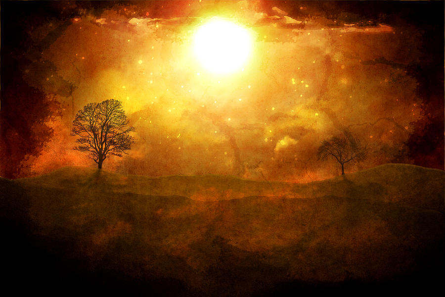 The Setting Sun Digital Art  - The Setting Sun Fine Art Print