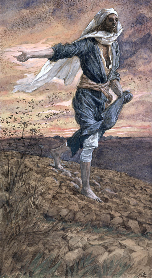 The Sower Painting  - The Sower Fine Art Print