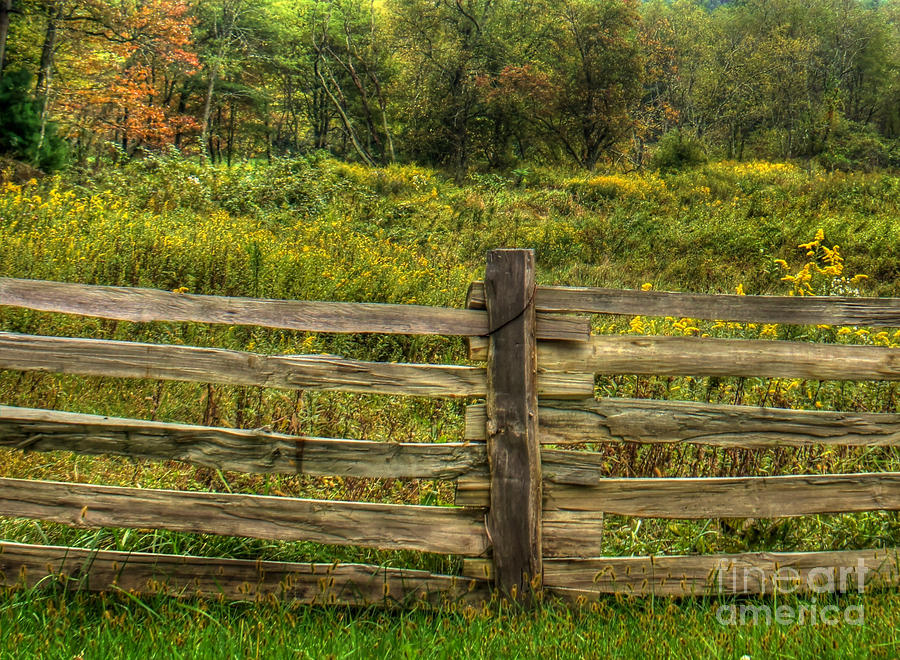 Split Rail Fence Photograph - The Split Rail Meadow by Benanne Stiens