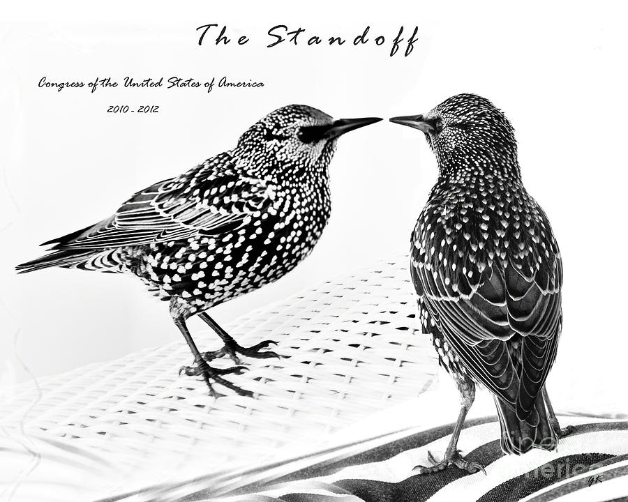 The Standoff  Congress Of The United States Of America   Photograph  - The Standoff  Congress Of The United States Of America   Fine Art Print