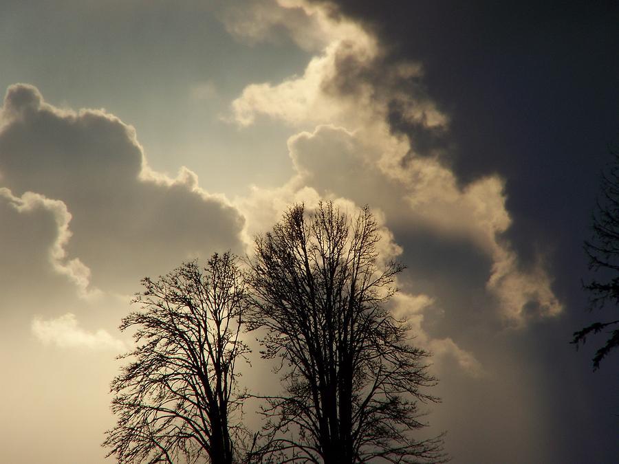 The Storm Iv Photograph