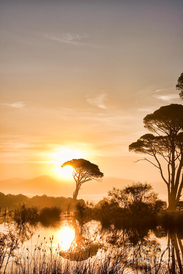 The Sunrise Photograph  - The Sunrise Fine Art Print