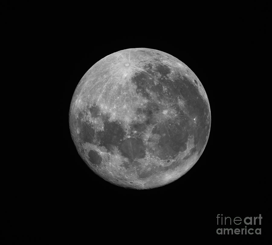The Supermoon Of March 19, 2011 Photograph