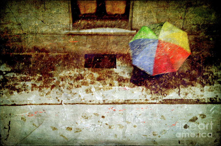 The Umbrella Photograph  - The Umbrella Fine Art Print