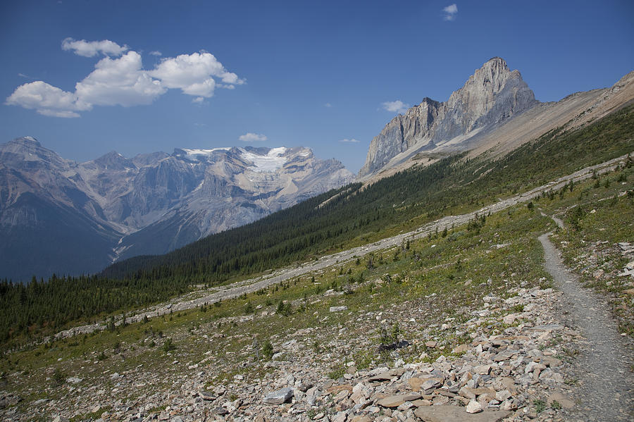 The Unesco Burgess Shale Fields Spread Photograph