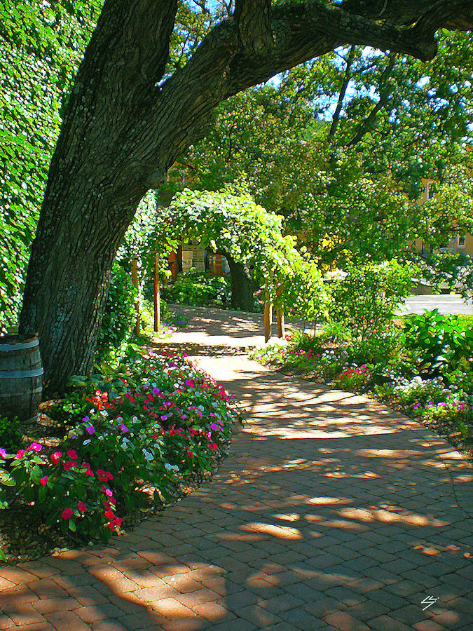 The Vineyard Walk Digital Art  - The Vineyard Walk Fine Art Print