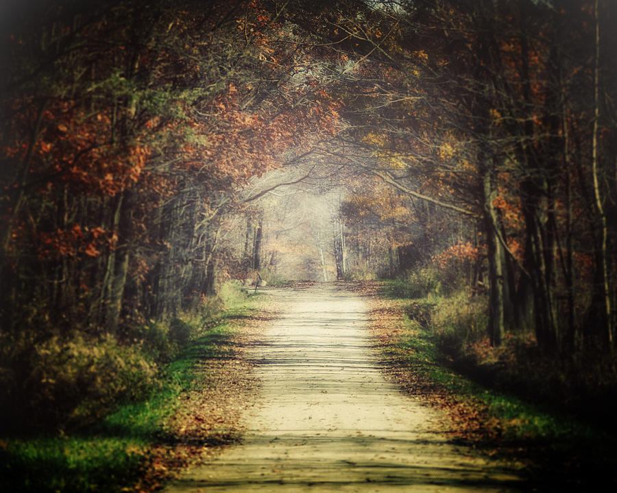 The Winding Road Photograph  - The Winding Road Fine Art Print