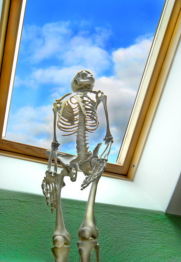 The Window Photograph