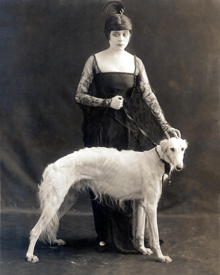 Theda Bara With Her Russian Wolfhound Photograph  - Theda Bara With Her Russian Wolfhound Fine Art Print