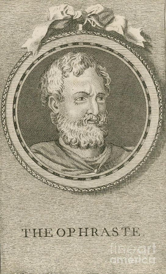 Theophrastus, Ancient Greek Polymath Photograph
