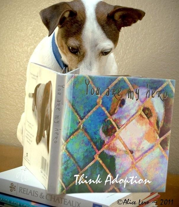 Think Adoption Photograph