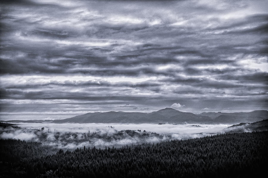 This Is Oregon State No.22 - Above The Clouds Photograph