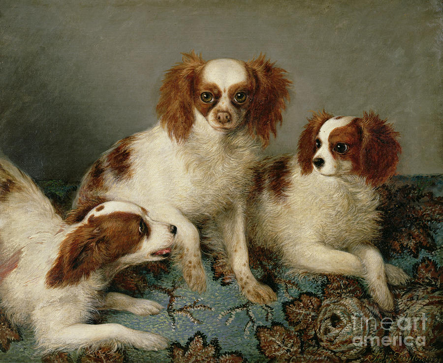 Three Cavalier King Charles Spaniels On A Rug Painting - Three Cavalier King Charles Spaniels On A Rug by English School