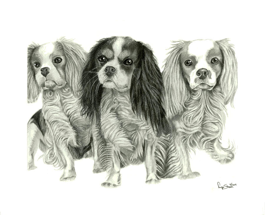 Three Musketeers Drawing  - Three Musketeers Fine Art Print