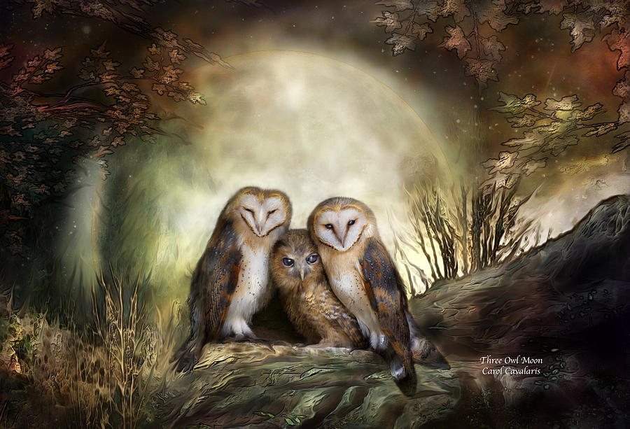 Three Owl Moon Mixed Media  - Three Owl Moon Fine Art Print