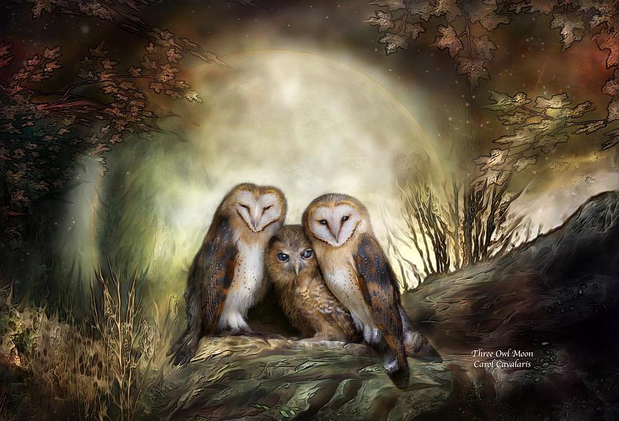Three Owl Moon Mixed Media