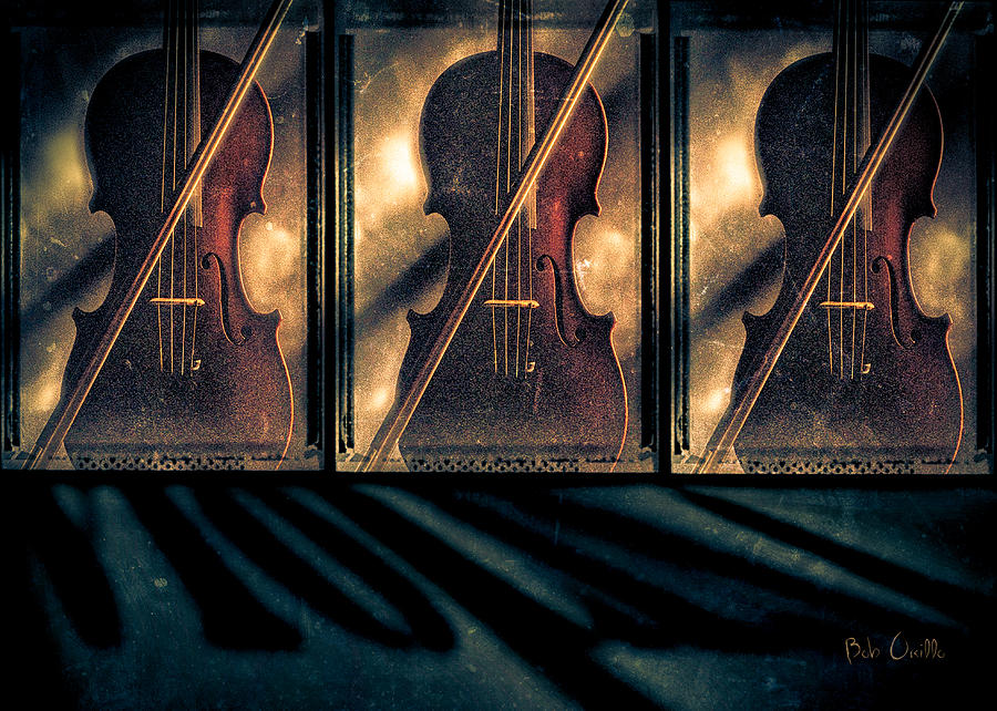 Three Violins Photograph