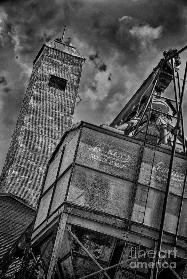 Through The Mill Bw Photograph
