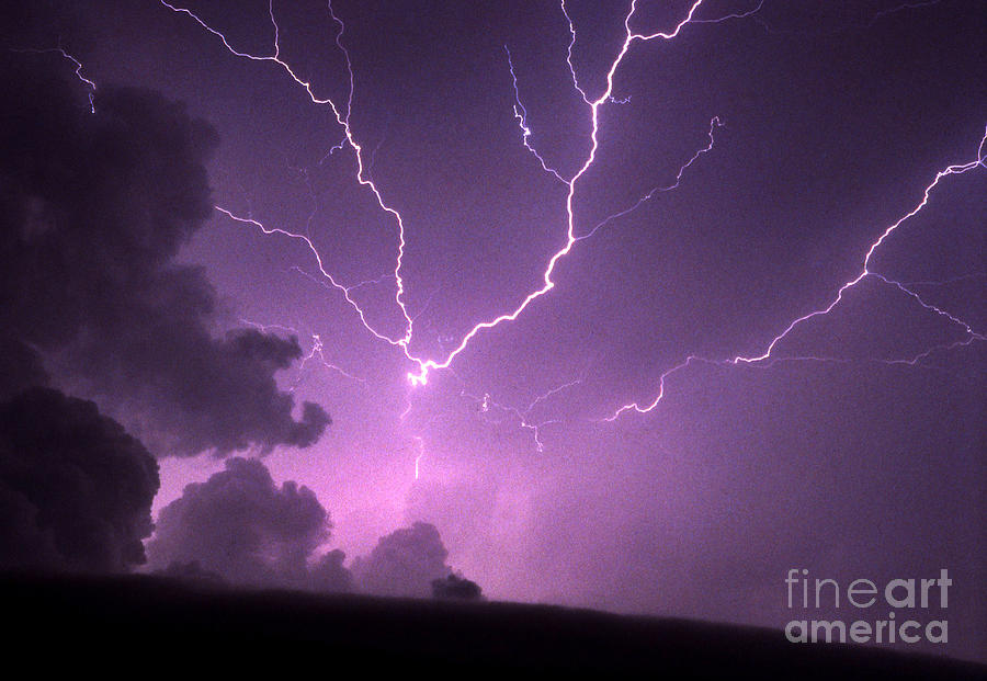 Thunderhead Spider Bolt Photograph  - Thunderhead Spider Bolt Fine Art Print