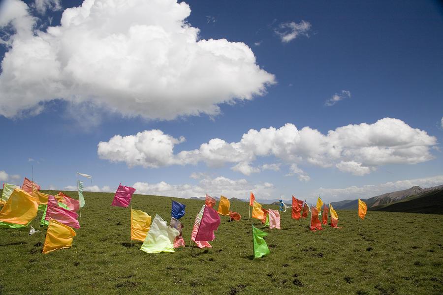 Tibetan Prayer Flags In A Field Photograph