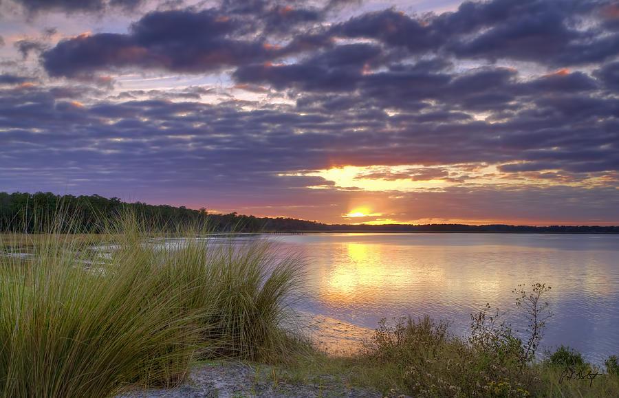 Tidal Estuary Photograph